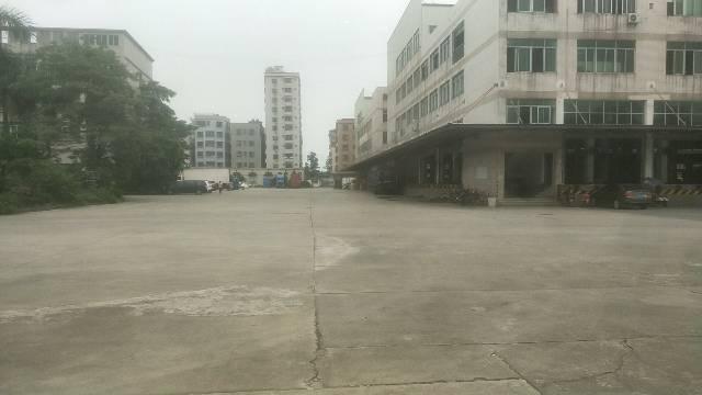 虎门沙角沿江高速边附近标准物流电商仓库50000方,可以分租