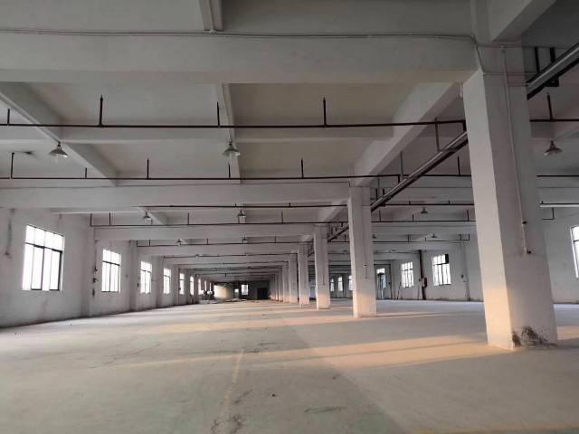 惠阳大亚湾原房东化工厂房出租
