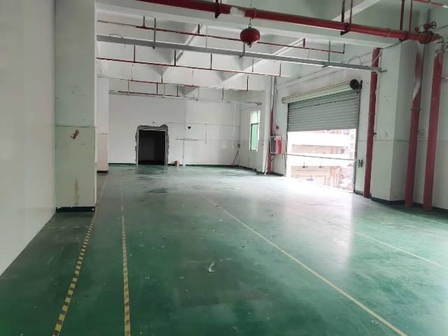 西乡簕竹角原房东1250平实际面积出租
