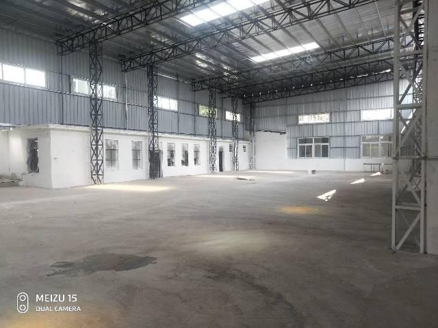 麻涌镇原房东厂房单一层钢构铁皮房7米高