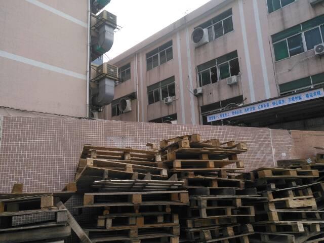 望牛墩原房东标准厂房5吨电梯2500平现成装修出租