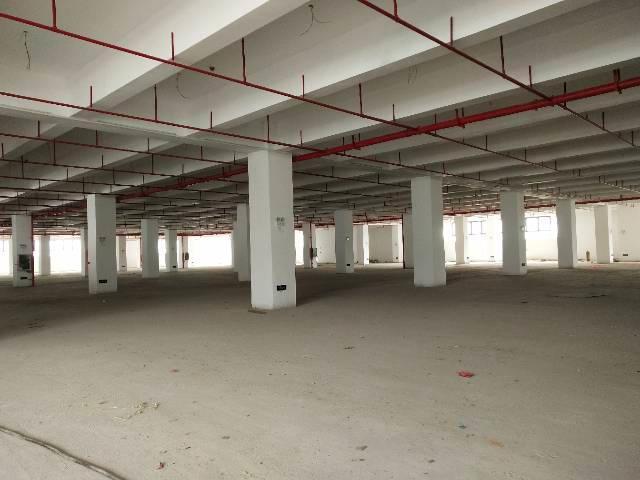 厚街镇红本独院厂房9000平米带卸货平台标准物流仓库招租