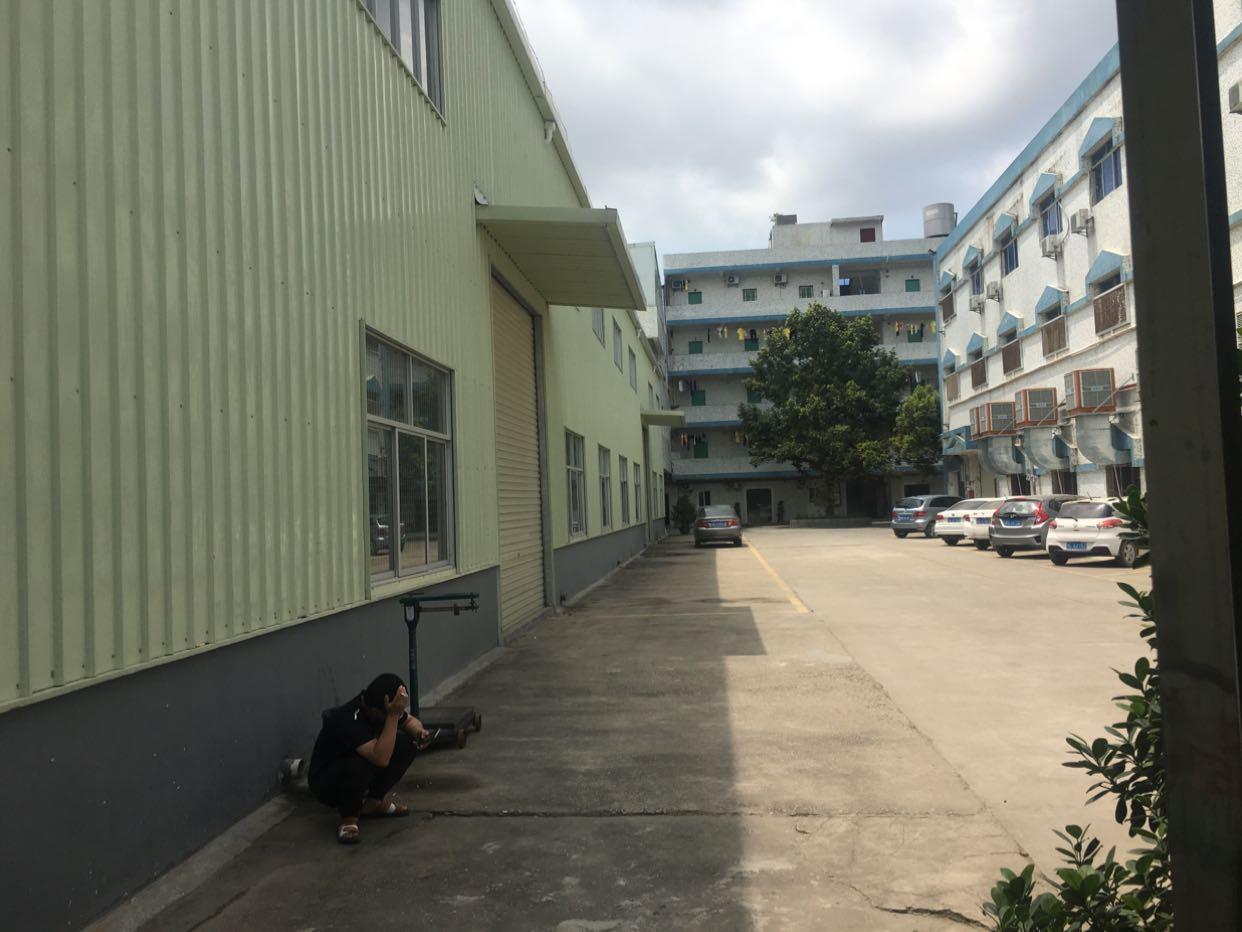 出租)塘厦蛟乙塘单一层厂房2560平方滴水7米带牛角