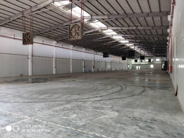 公明西田钢构厂房3000平,交通方便,空地超大
