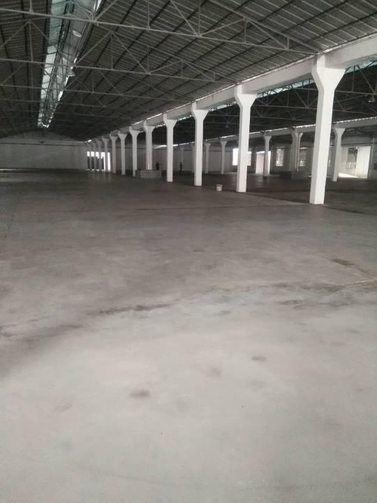 广州黄埔区全新独门独院单一层仓库出租21000平价格28