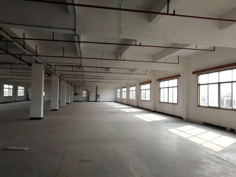 公明南环路边新出3楼500平方米精装修厂房出租可办环评