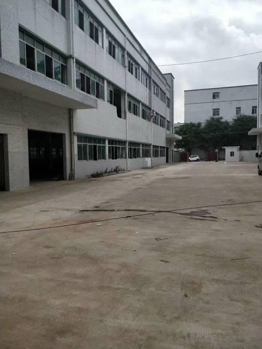 光明原房东独院厂房放租三层4500平米可以分租