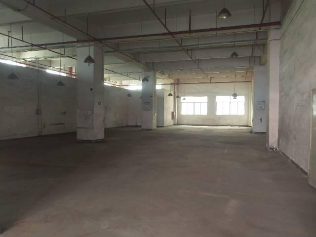 公明西田二楼500平精装修标准厂房招租