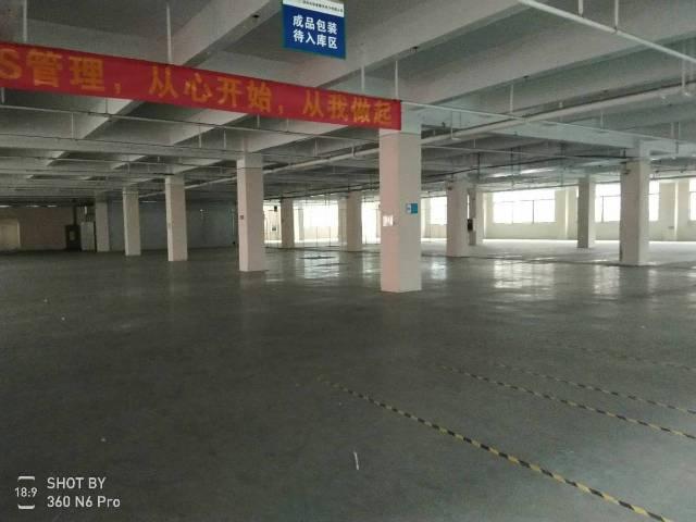 深圳西乡3300平可做污染厂房
