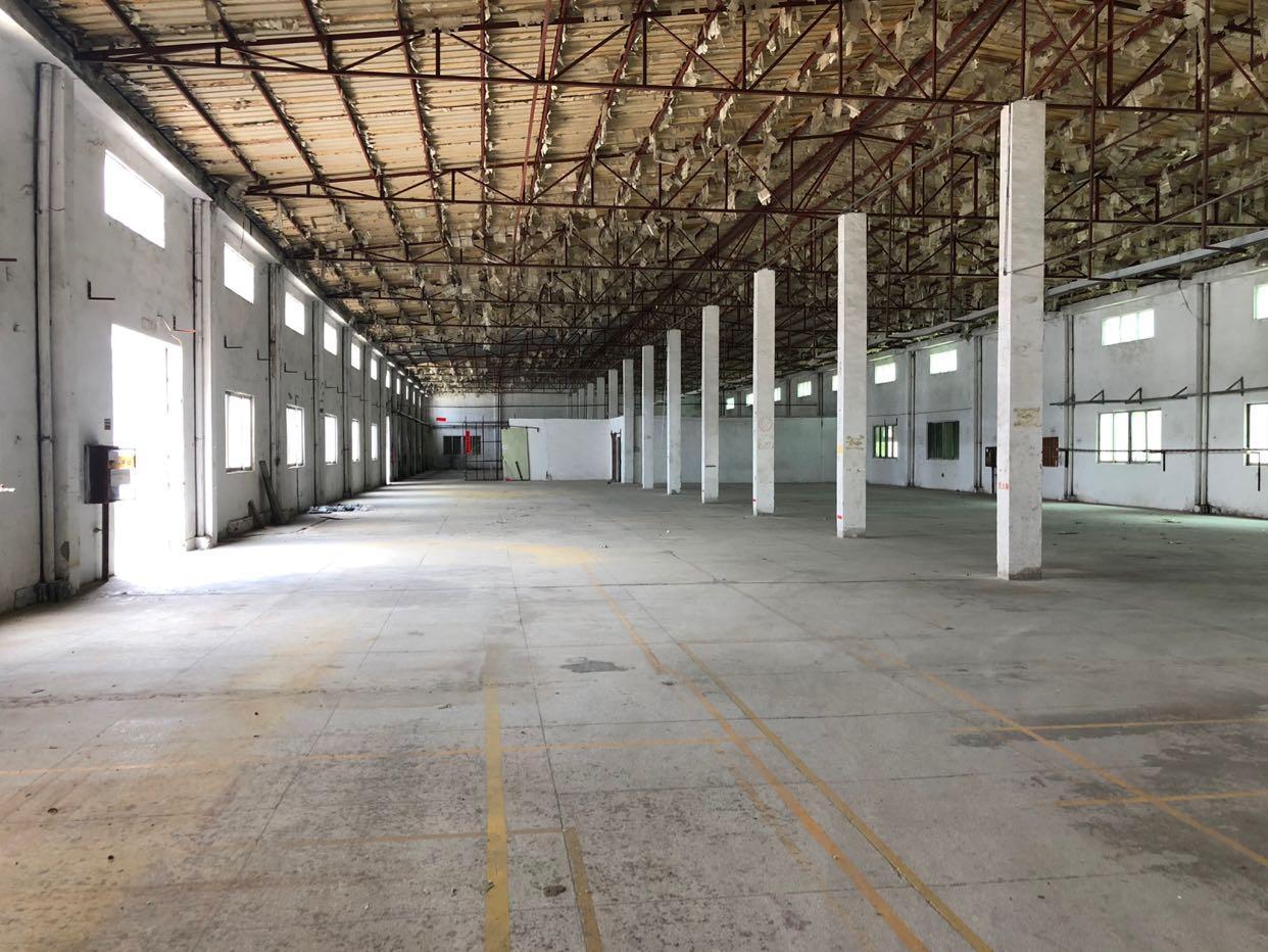 碧岭新出钢构7800平8米高厂房仓库空地大可分租