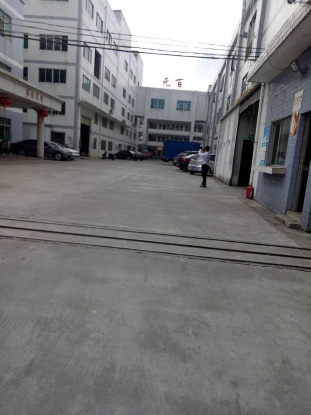 清溪原房东厂房大小可分2000平方
