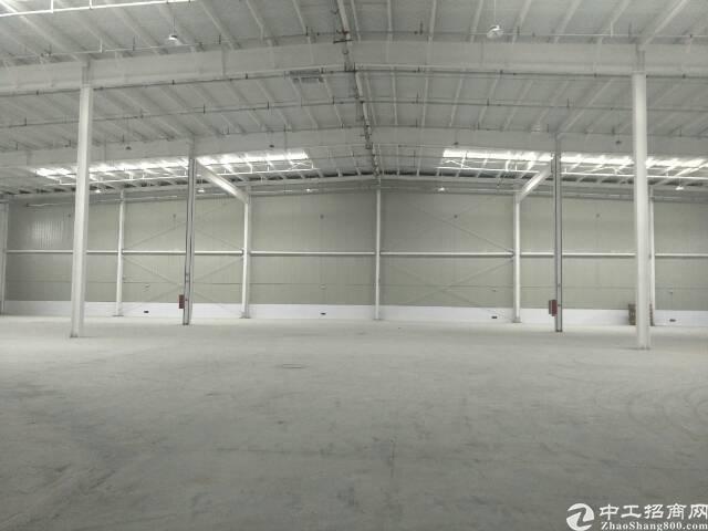 阳逻管委会15000平米钢结构标准库房出租,配套办公,宿舍价