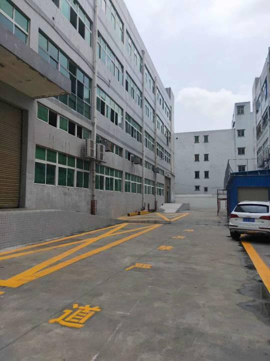 坪山坑梓新出楼上整层1500平带装修办公室招租
