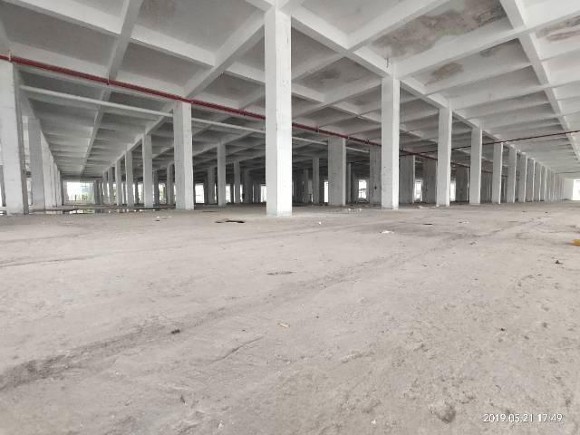 原房东实际面积出租单一层滴水八米仓库6800平米