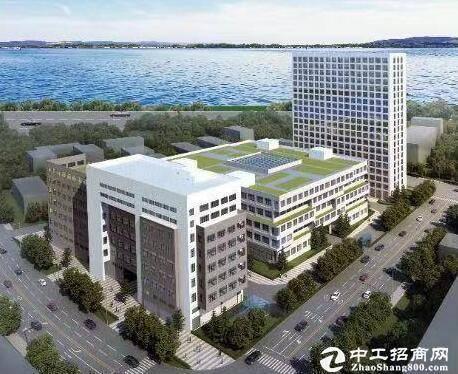 汉阳黄金口淘金路,2000平框架结构厂房产业园库房出售
