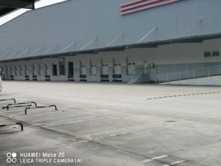 物流园区生鲜仓库单一层钢构招租冷冻仓库