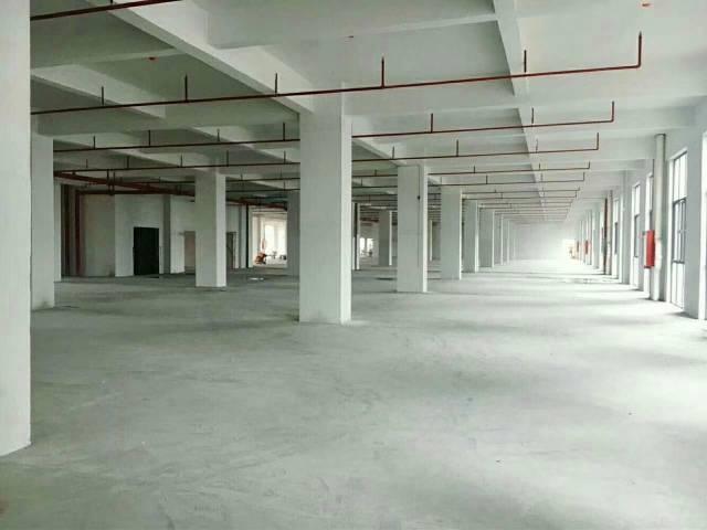 大型工业园,标准厂房,环境好-图2