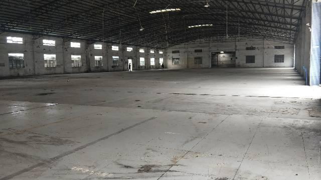 钟落潭竹料105国道边5000平方单一层可做生产仓库
