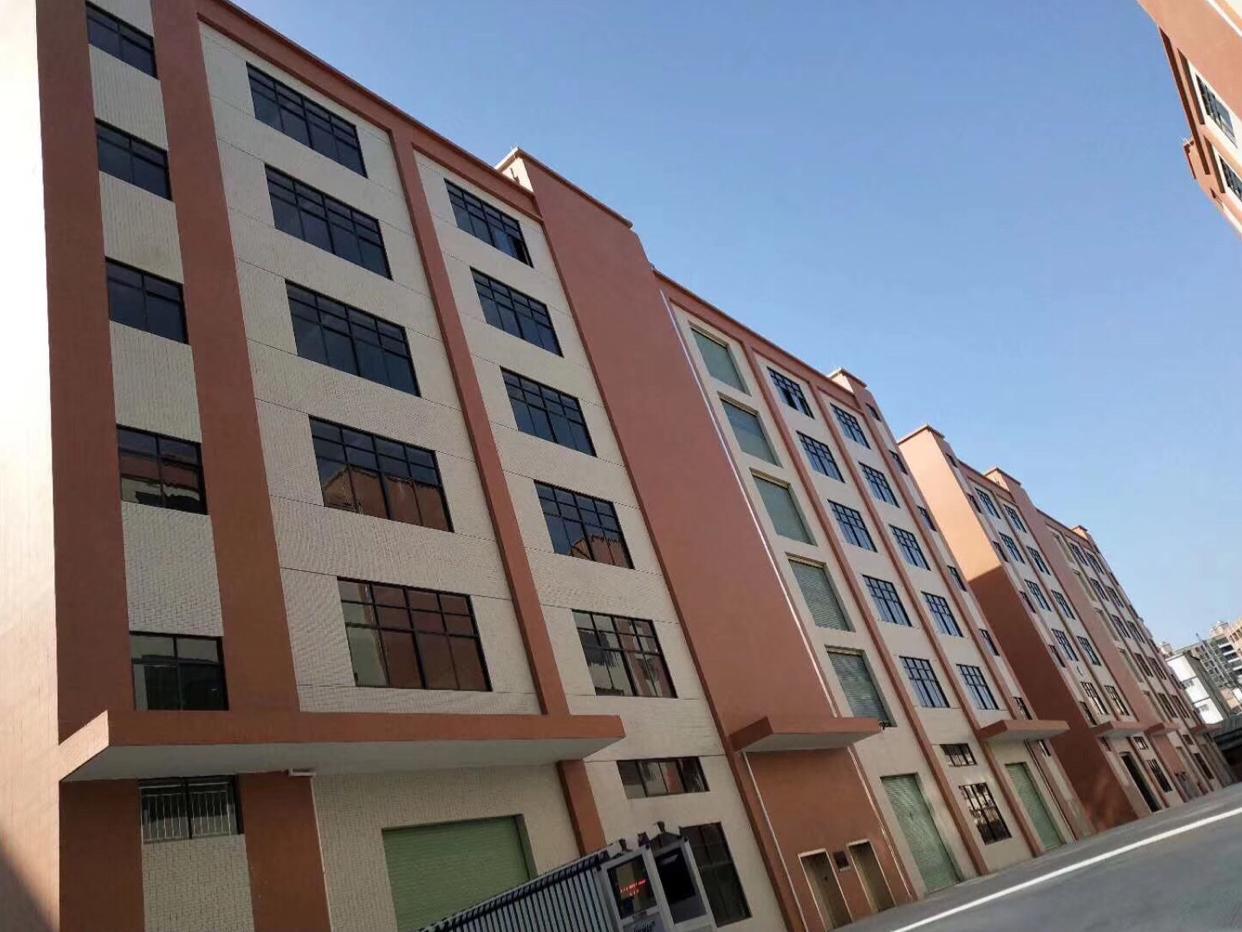 松山湖4200平新建厂房