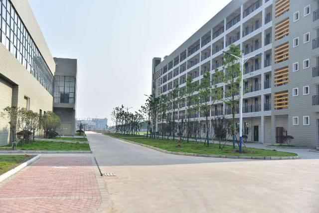大浪6万平方工业园厂房出租100平可分租,办公,生产,仓库
