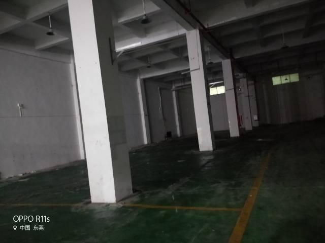 高埗镇原房东花园式厂房出租