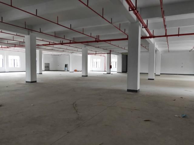 惠州惠城水口高新区厂房1-5楼出租(可分租)-图2