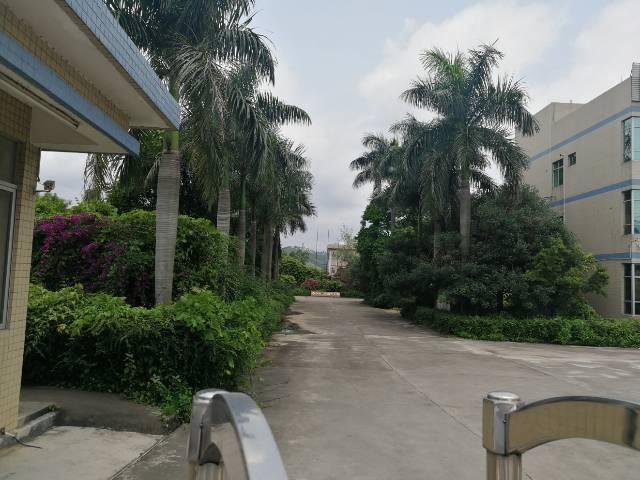 惠阳平潭占地26200平方国有证厂房出售