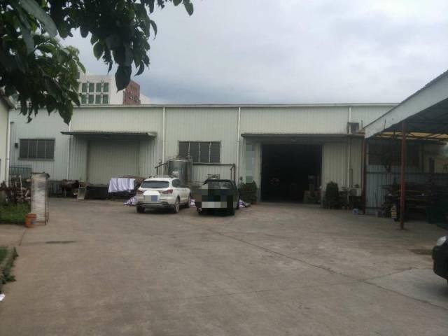 滨海湾区41年村委钢构厂房急售仅1050万