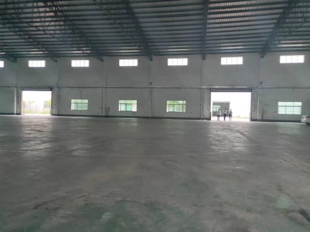 增城区新塘镇单一层厂房面积13300平方-图5