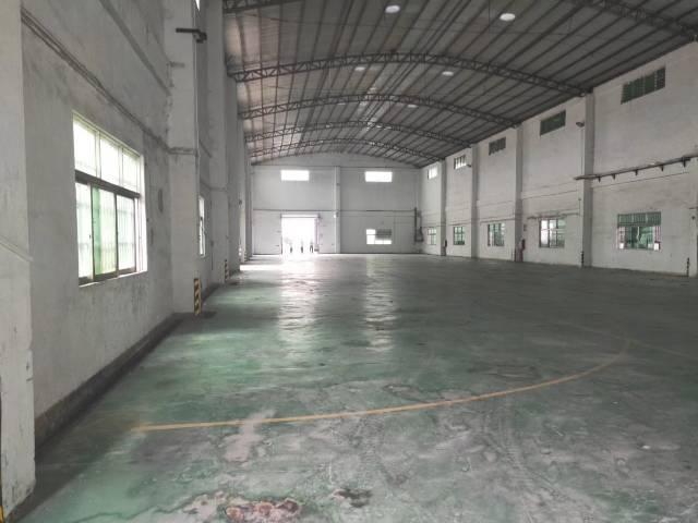增城区新塘镇单一层厂房面积13300平方-图2