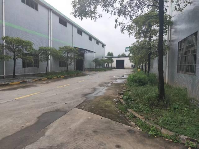 增城区新塘镇单一层厂房面积13300平方-图6