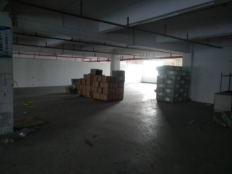 中堂新出标准小独院厂房