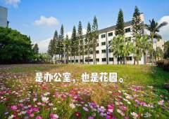 深圳龙华富士康附近花园式写字楼