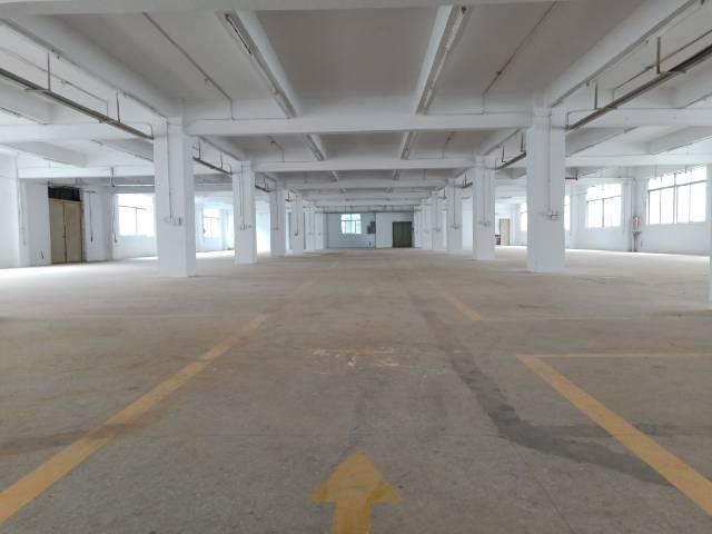 标准厂房3楼1200平方,全新整层出租