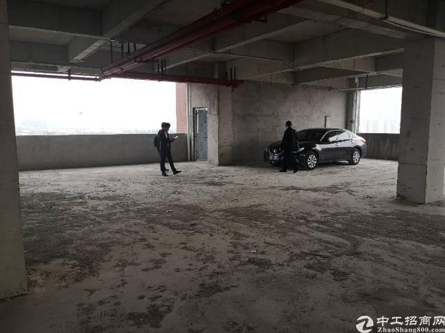 广州新塘新出钢结构单一层仓库厂房4000平