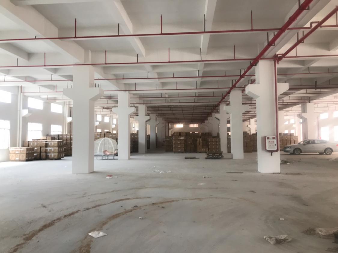 桥头镇现有全新厂房可以做短期仓库