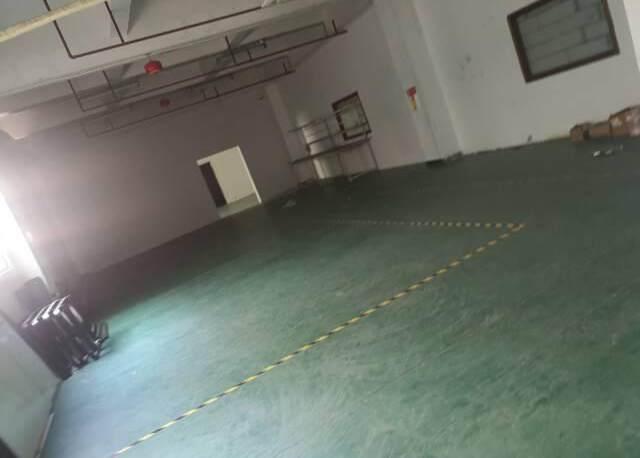 观澜新出原房东850平厂房出租零公摊园区精装修无需转让费
