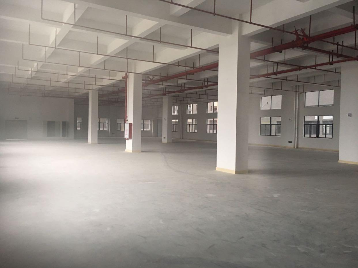 上市公司看过来证件齐全总建筑58000平方-图2