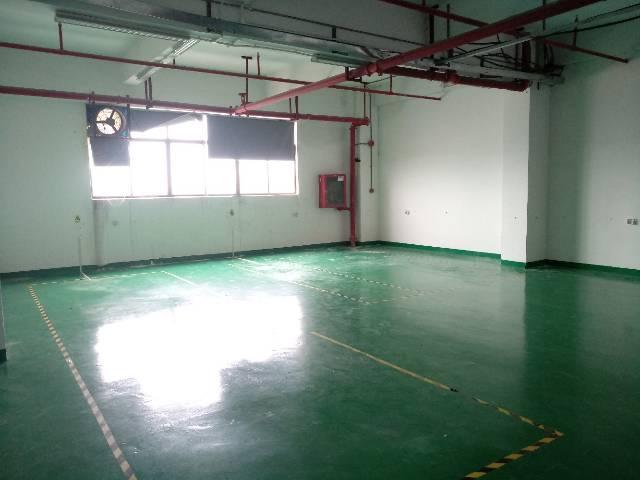 沙井共和新出楼上带装修小面积280㎡厂房出租