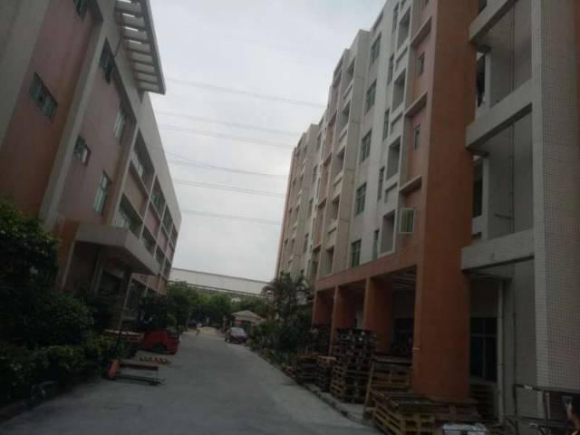 独门独院的标准厂房招租。面积32000