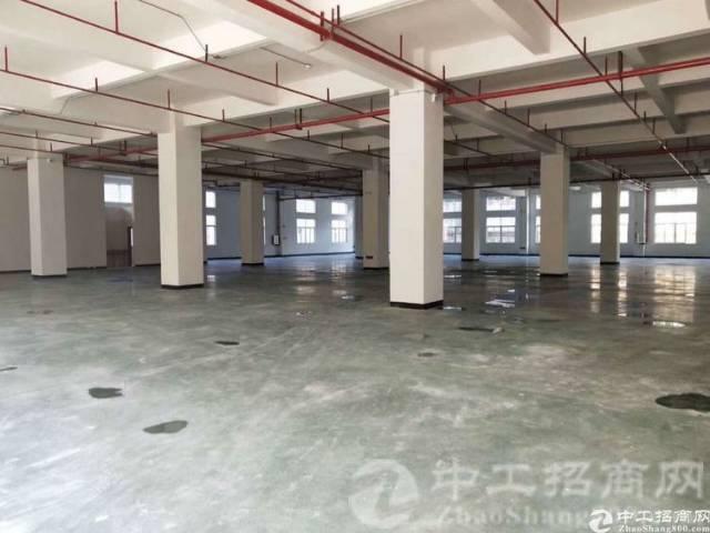 惠城区新出独院,配套完善,证件齐全,低价招租