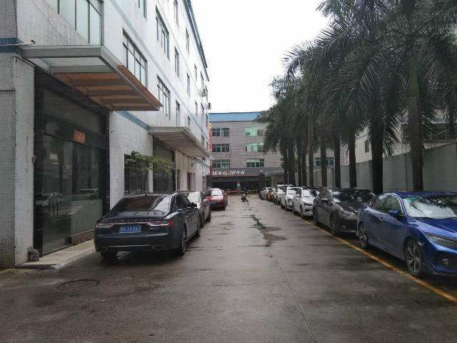新塘镇牛仔城二楼三楼500平方电商仓库出租