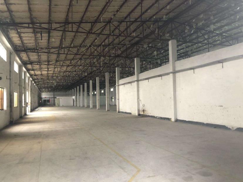 坪山沙湖新出钢构2500平可分租6米高厂房仓库空地大