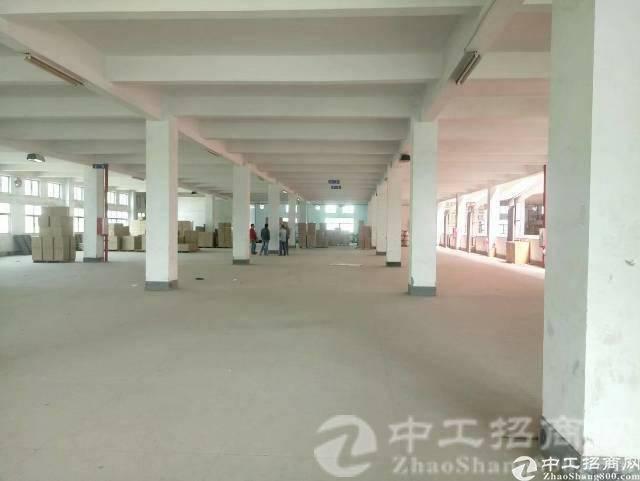 惠州独门独院配套齐全可分租厂房来袭