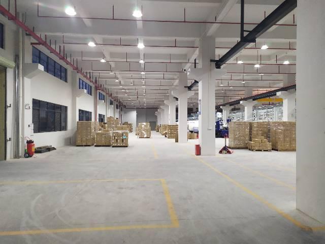 惠阳三和标准厂房实际面积出租4200平出租带牛角位6米-图2