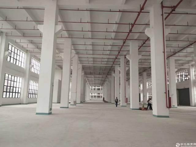 惠城区新出配套齐全花园式标准厂房火爆招租