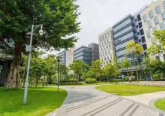 TCL科技园林办公,物业直租298平私人订制装修办公室出租