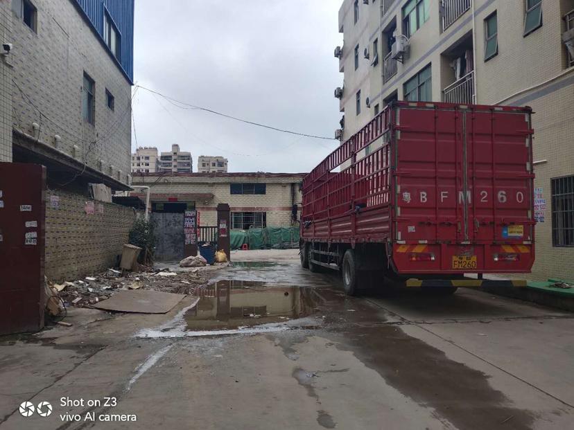 惠阳区新圩真塘吓独栋钢构厂房