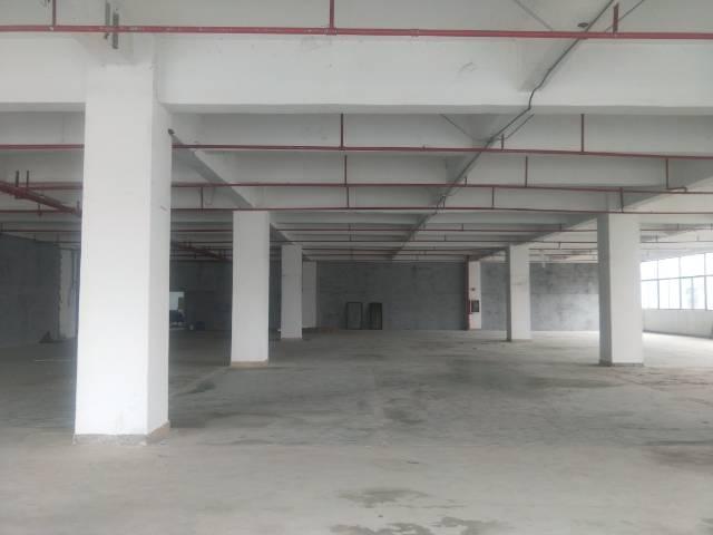 公明楼村新出楼上1200平方厂房出租
