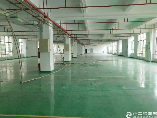 惠城区新出一楼厂房带装修低价招租